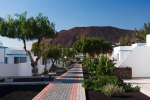 Corbeta-Lanzarote-elba